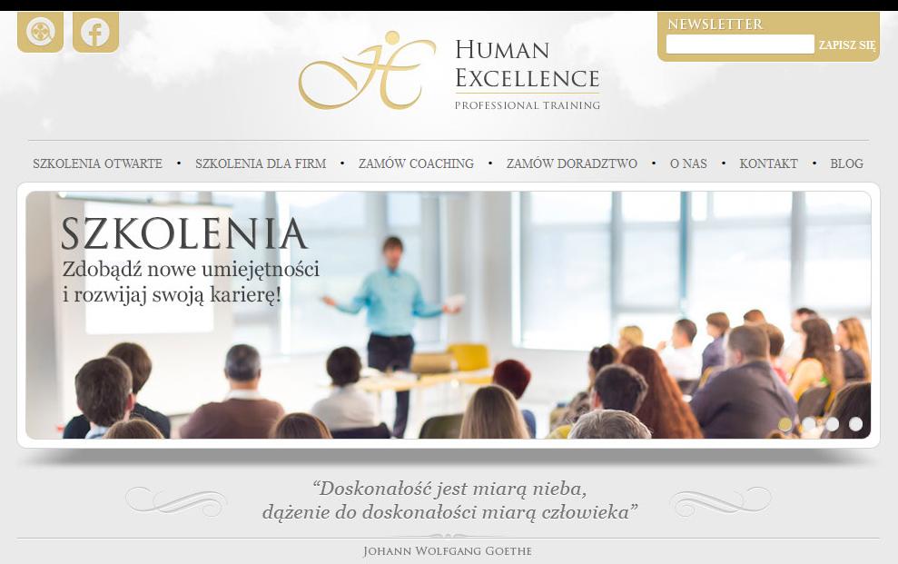 Wygląd strony głównej Humanexcellence